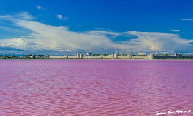 The sea is pink