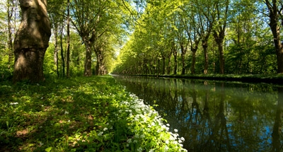 Canal du Rhône au Rhin, Strasbourg