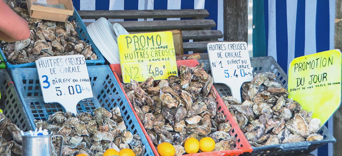 Huîtres sur un marché en Bretagne